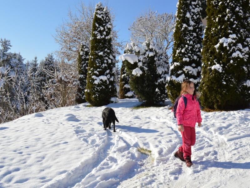 Urlaub mit Hund im Winter  Kärnten - Hotel Nudelbacher Kärnten