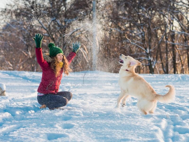 Silvester mit Hund in Kärnten 7 Nächte