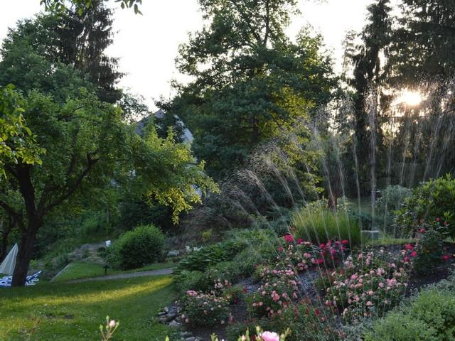 Garten Wasser