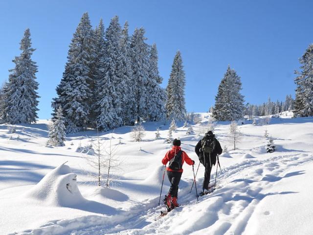 Skitour im Naturpark Dobratsch
